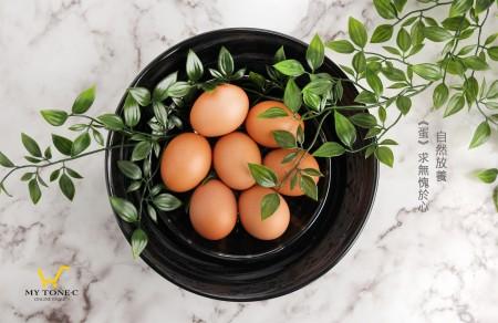 放牧紅殼土雞蛋