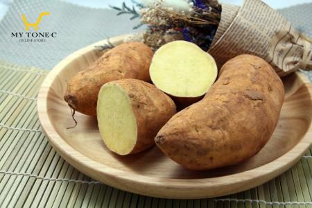 無毒日本品種黃肉地瓜