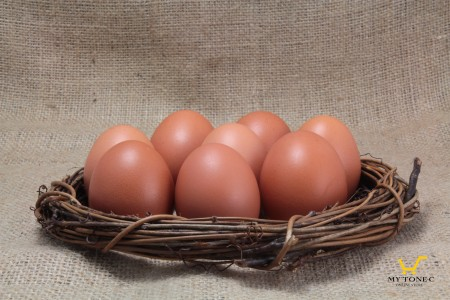 極上紅蛋紅殼蛋