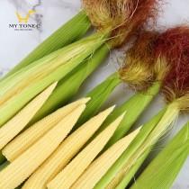 無毒帶殼紅鬚玉米筍