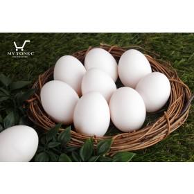 【醣心金雞蛋】極上白蛋30枚/盒 X 6 -新品推廣優惠中